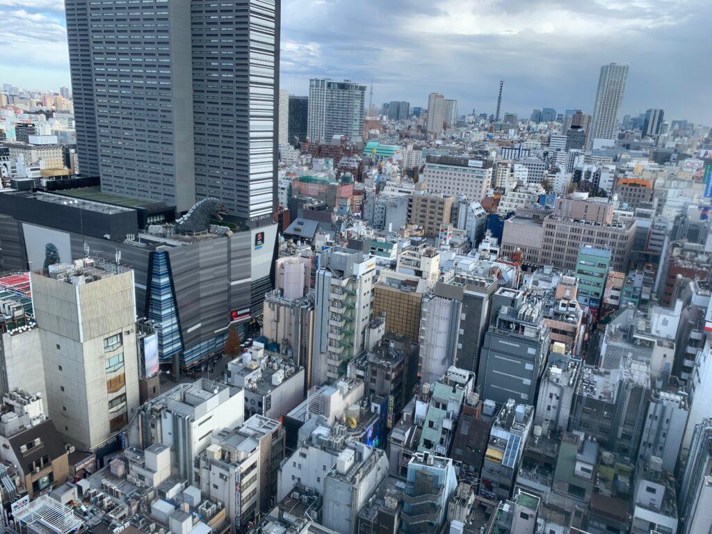 新宿プリンスホテル『デラックスダブル(30.6㎡)』からの眺望